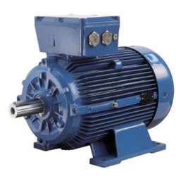 Motori Elettrici Asincroni Atex