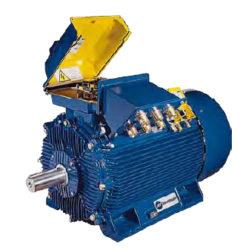 Motori Elettrici Asincroni Trifase